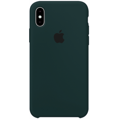 Чехол Apple Silicone Case для iPhone X/Xs Forest Green