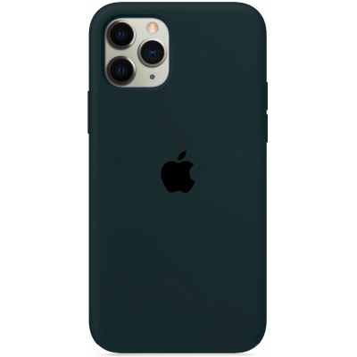 Чехол Apple Silicone Case для iPhone 12 Pro Max Forest Green